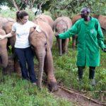 Kristin Davis and the Elephants