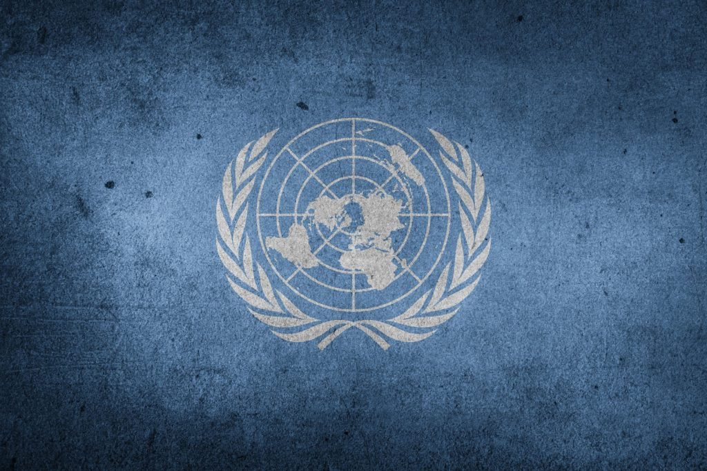 The UN Security Council is Disgusting and Depraved