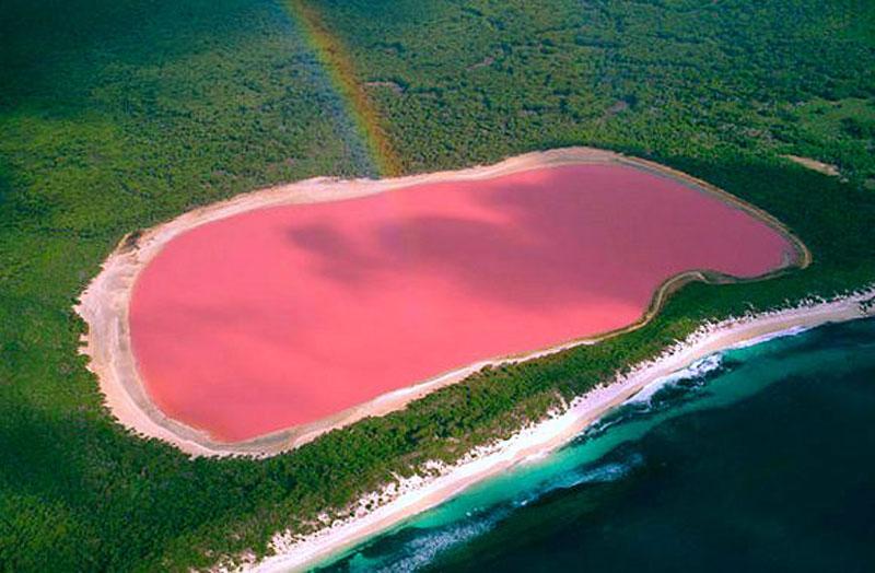 Australia's Bubblegum-Pink Lake