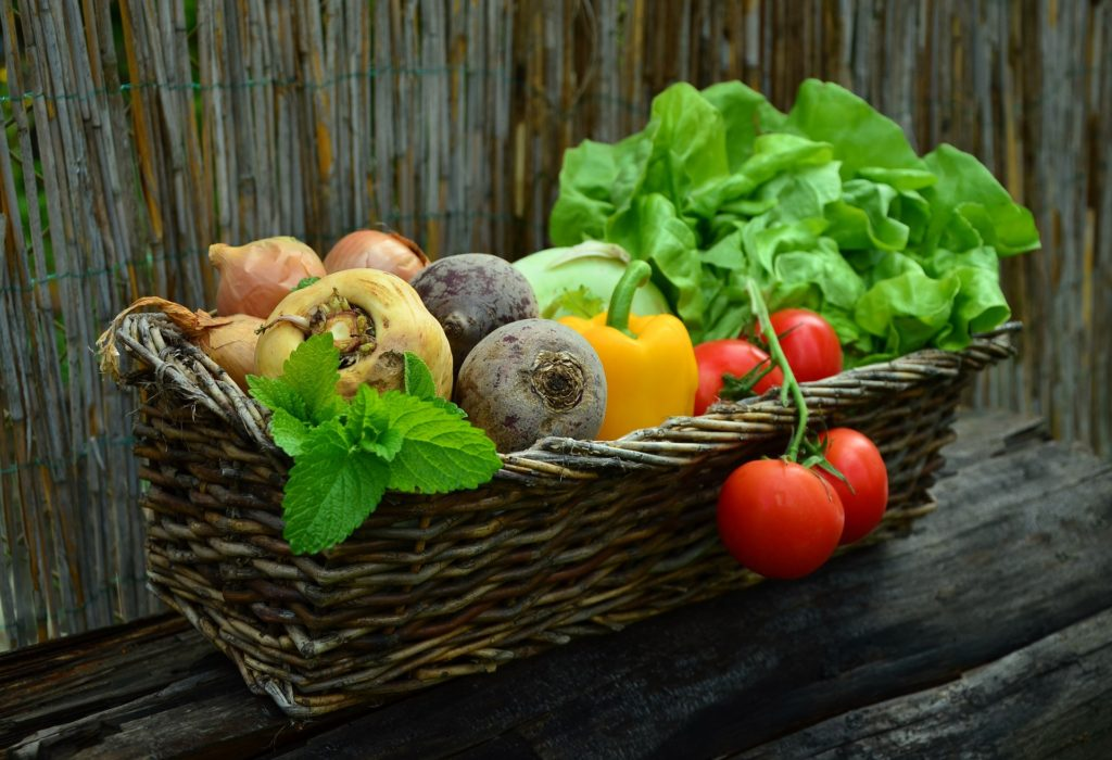 Your Vote Doesn't Count: Grow Food Instead