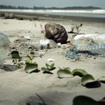 South Pacific Trash Island May Be a Million Square Miles in Area