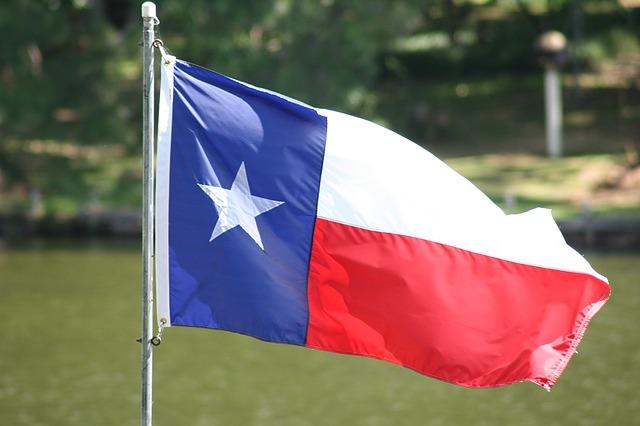 Texas Senate approves anti-abortion bill in overnight vote