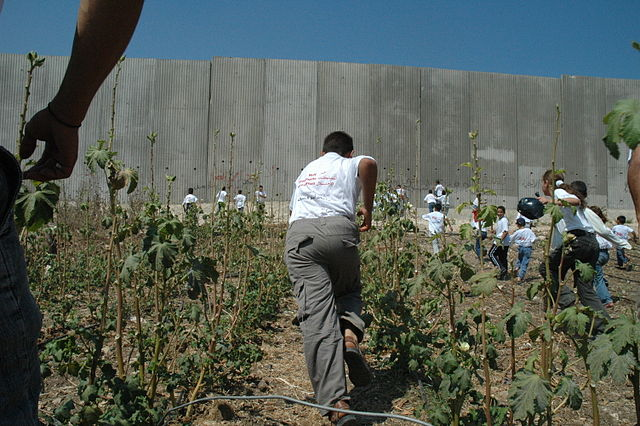 a discussion on the apartheid wall between palestine and israel Apartheid and occupation more than 5 million palestinians are denied equal rights by the state of israel under a system of apartheid, a deliberate policy of racial or ethnic segregation.